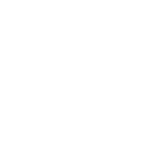 paddle icon5